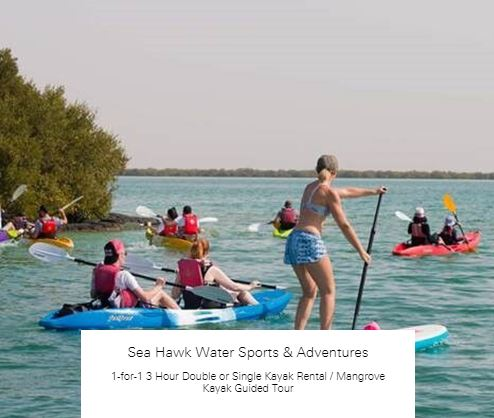 1-for-1 3 Hour Double or Single Kayak Rental at Sea Hawk Water Sports & Adventures
